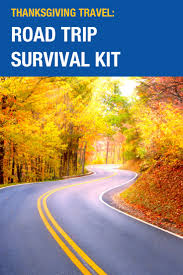 thanksgiving travel road trip survival kit