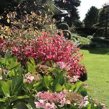 Royal Botanic Gardens Kew Richmond Surrey Tw9 3ab Autumn At Kew A Lovely Melody