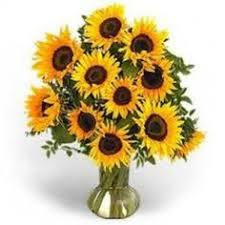 deliver flowers today same day bouquets same day flowers delivered by the frugal