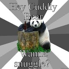 Snuggle Bear Meme - cuddly snuggle bear quickmeme