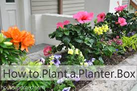 Plants And Planters by How To Plant A Planter Box With Flowers And Other Plants House
