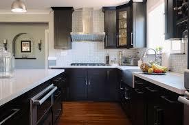 Espresso Shaker Kitchen Cabinets Espresso Shaker Style Cabinets Pre Assembled Best Online Cabinets