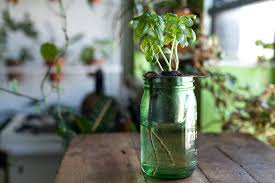 diy self watering herb garden how to create a diy self watering planter for the home homestead