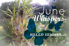 The Month Of June Flower - 30 days of june 2016 the first 10 u2013 katie jane interiors