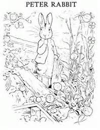 mr mcgregor s garden rabbit 55 best mr mcgregors garden images on o toole
