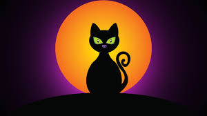 halloween night wallpaper black halloween cat at night 3840x2160 4k 16 9 ultra hd uhd