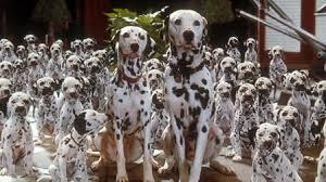 101 dalmatians 1996 mubi