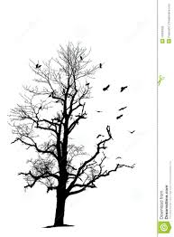 bare tree and birds stock illustration illustration of single