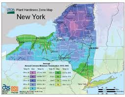 Garden Planting Zones - new york zone hardiness map when to start planting seasonal