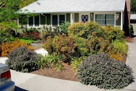 Backyard Ideas Without Grass Lawn Replacements And Tips For Landscaping Without Grass With No