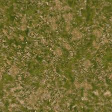 ground textures 3d models for 3d studio max poser bryce