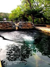 174 best texas travel images texas travel dallas