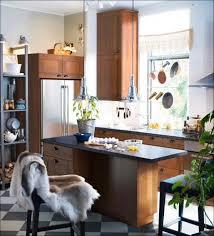 Ikea Kitchen Cabinets For Bathroom Kitchen Ikea Upper Cabinets Home Contractors Ikea Kitchen