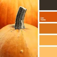21 best colour schemes images on pinterest brown color schemes