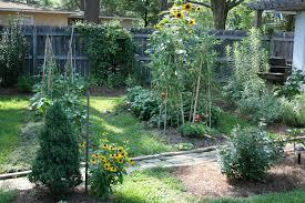 constructing raised beds for the mississippi gardener