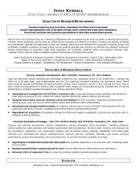 business development manager resumes business development resume objective soaringeaglecasino us