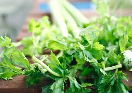 cuisine aphrodisiaque miser sur les légumes aphrodisiaques cuisine aphrodisiaque