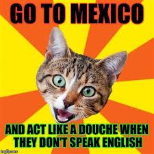 bad advice cat meme imgflip