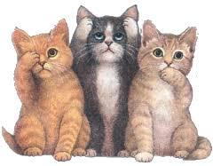 قطتك في سن المراهقة..؟؟!!  Images?q=tbn:ANd9GcSyJdZb4fprBEifWyUlvYq5SGnoLfJuw0pU0xiRmiLEKTSEzJIW