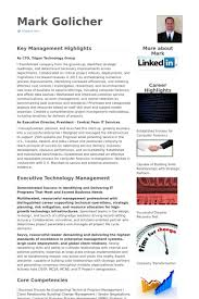 Cio Resume Examples by Chief Technology Officer Resume Samples Visualcv Resume Samples