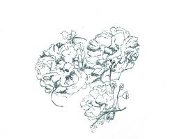 saatchi art dutch still life outline drawing with peonies and
