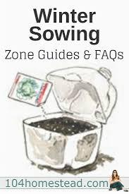 15382 best grow a winter garden images on pinterest winter
