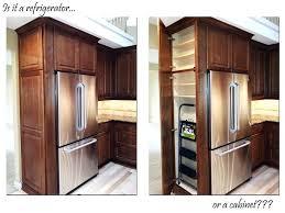 kitchen appliance ideas unique refrigerator kitchen cabinet refrigerator unique on kitchen