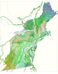Maps Org Creation Of Regional Habitat Cover Maps Application Of The