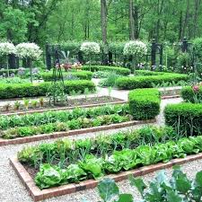 Best Vegetable Garden Layout Small Backyard Vegetable Garden Design Ideas Small Vegetable