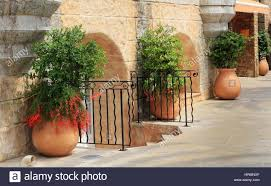 plants in large terracotta pots on patio of pink villa in southern