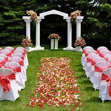 wedding arches nz coral outdoor wedding jpg