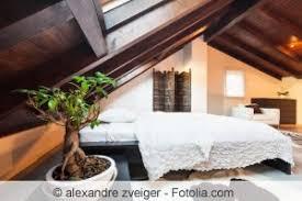pflanzen für schlafzimmer pflanzen im schlafzimmer tipps für die richtigen zimmerpflanzen