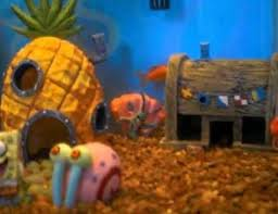 5 aquarium theme available to complete your fish tank decorations