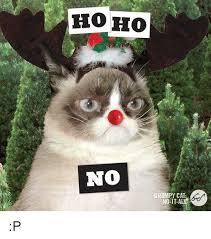 Grumpy Cat Meme No - ho ho no grumpy cat no it al p cats meme on astrologymemes com
