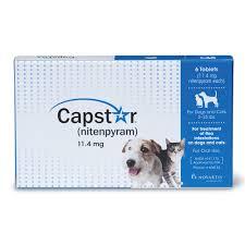 flea control capstar tablets for cats