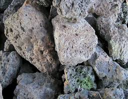 Volcanic Rock Garden Tanami Excavations Order And Payment Form