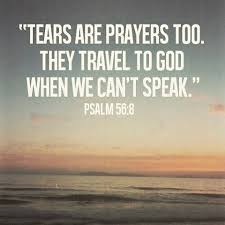 Image result for biblical quotes about peace