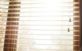 Different Types Of Window Blinds Different Types Of Window Blinds Adhoc Incentive