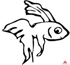 betta fish clipart free clipart design download
