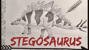 stegosaurus dinosaur sketch youtube