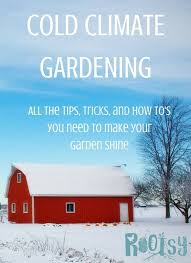 Fall Vegetable Garden Ideas by Best 20 Cold Climate Gardening Ideas On Pinterest Winter