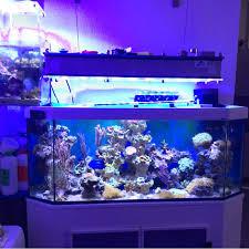 coral led aquarium lighting sunset wireless led aquarium