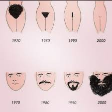 male pubic hair trends 164 best funny humor images on pinterest funny photos funny