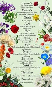 flower of the month birth flowers april s and sweet pea birth flowers birth