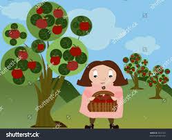 apple orchard stock vector 38557921 shutterstock