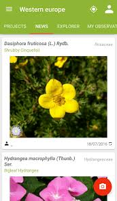 plantnet plant identification android apps on google play