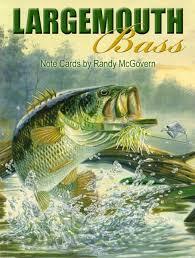leanin tree fish note cards largemouth bass bass fishing