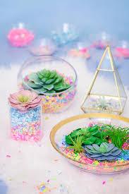 make your own colorful confetti succulent terrarium the confetti bar