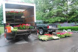 plant delivery planting the annual flowers dirt simple