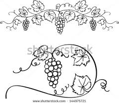 decorative grapes vine vector ornament fancy embroidery